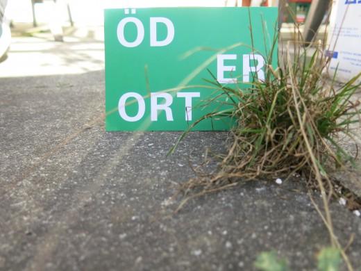 Öder Ort Facebook Aktion; Foto: MaPe
