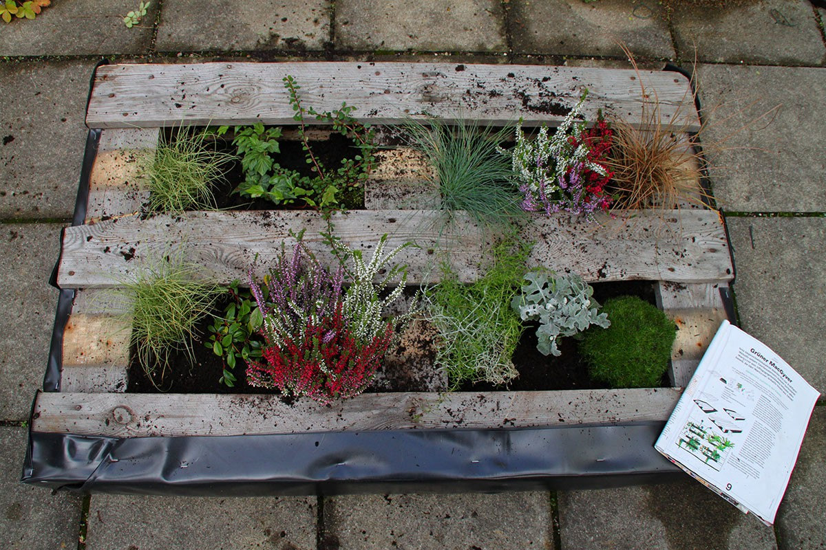diy-projekt: wir bepflanzen eine palette! - greencity e.v.