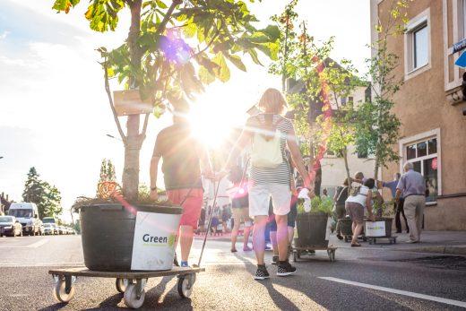 Green City Wanderbaumallee Menzing, Foto: Fabian Norden