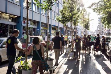 Mehr Grün in Bahnhofsnähe: Umzug der Wanderbaumallee in der Maxvorstadt