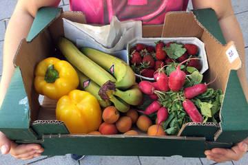 Die Klimaküche: 400 SchülerInnen entdecken klimafreundliche und ökologische Ernährung