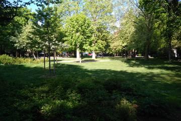 Ein neuer Gemeinschaftsgarten am Nußbaumpark