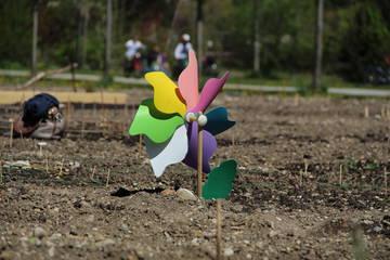 BeetpatInnen eröffnen erfolgreich die Gartensaison der Essbaren Stadt