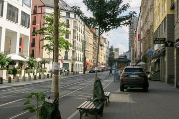 Jetzt unterzeichnen: Petition für mehr Grün in der Maxvorstadt!